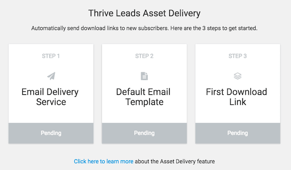 Thrive Leads Asset Delivery